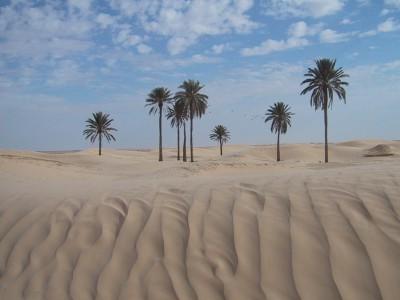 Wüste Tunesien